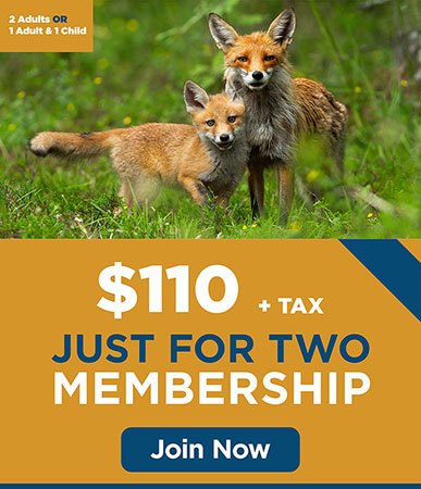 Just for Two Membership